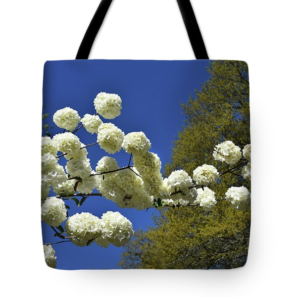 Tote Bag featuring the photograph Snowballs by Skip Willits