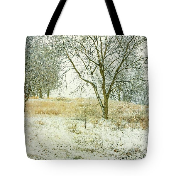Tote Bag featuring the digital art Snowy Winter Morning by Randy Steele