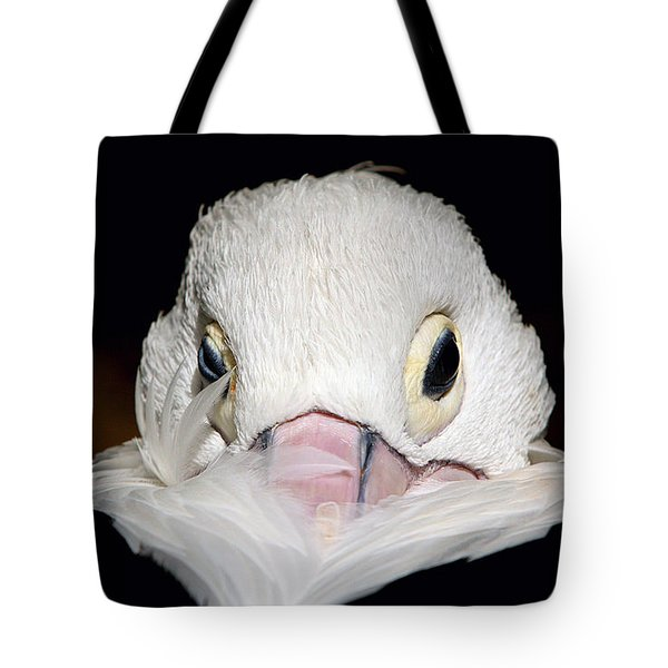 Tote Bag featuring the photograph Snuggled by Marion Cullen