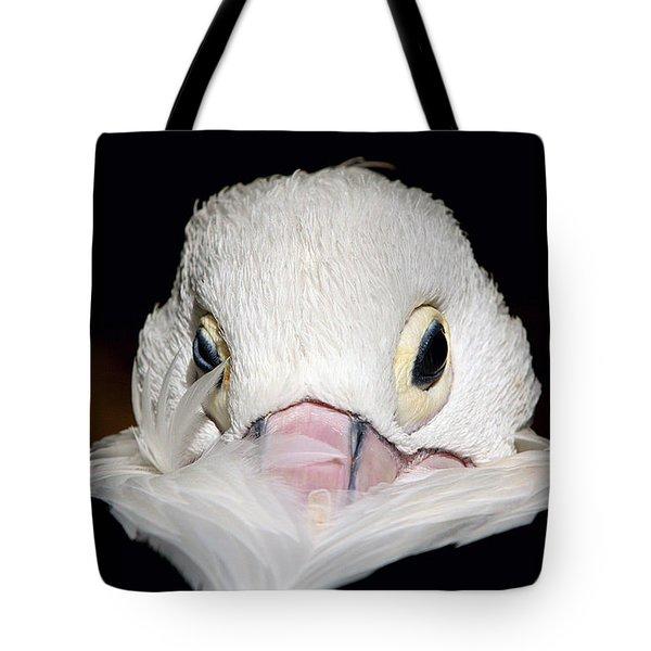 Snuggled Tote Bag