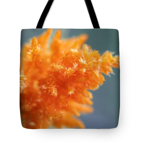 Soft Textures Tote Bag