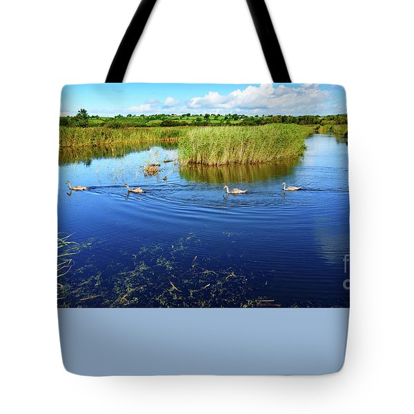 Somerset Levels Tote Bag by Colin Rayner