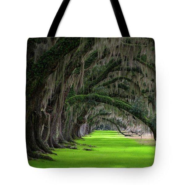 Southern Oaks Tote Bag