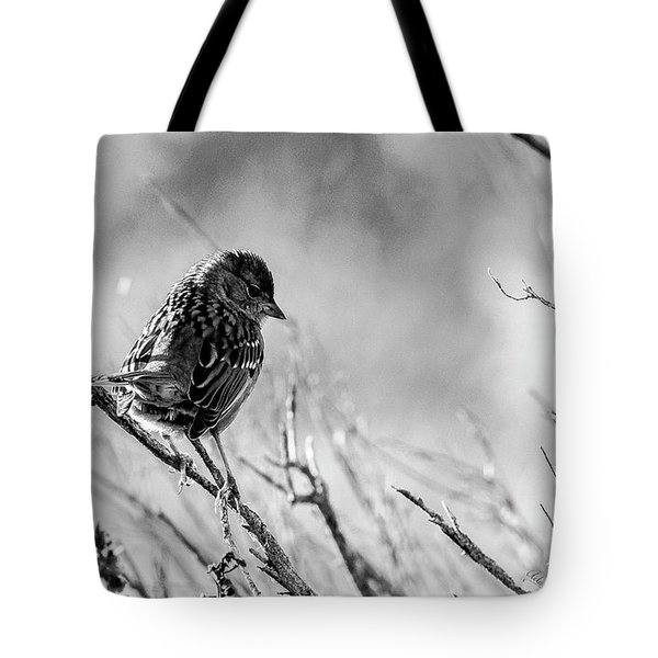 Snarky Sparrow, Black And White Tote Bag