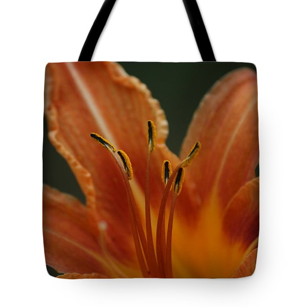Tote Bag featuring the photograph Spider Lily by Cathy Harper