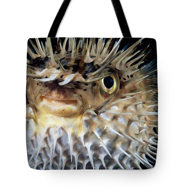 Spiny Puffer Tote Bag by Dave Fleetham - Printscapes