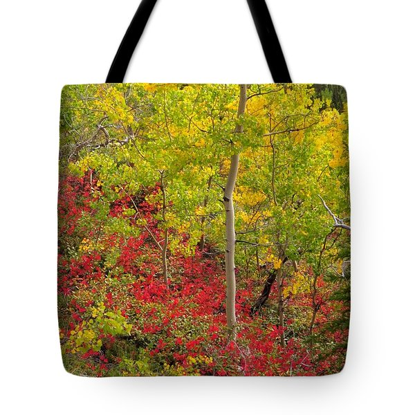 Splash Of Autumn Tote Bag