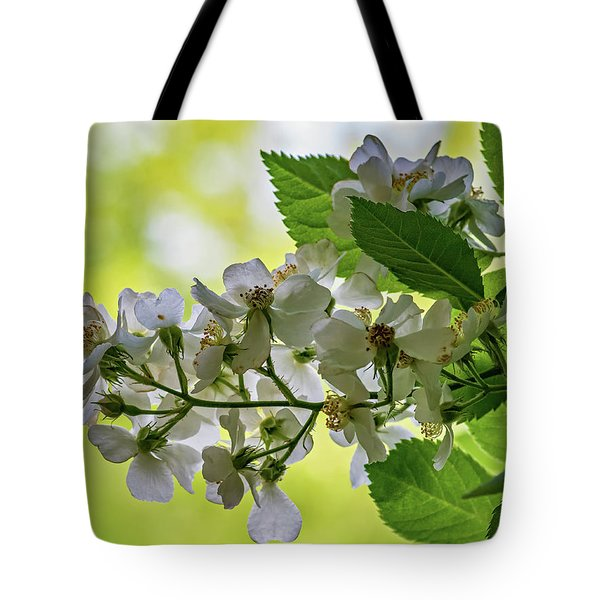 Spring Dream Tote Bag