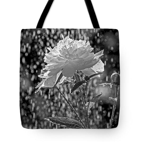 Spring Rain - 365-13 Tote Bag