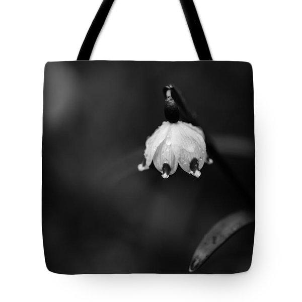 Spring Snowflake Tote Bag