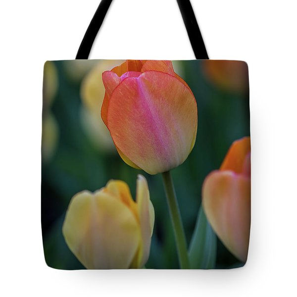 Tote Bag featuring the photograph Spring Tulip by Ron Pate