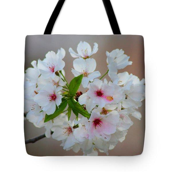 Springtime Bliss Tote Bag