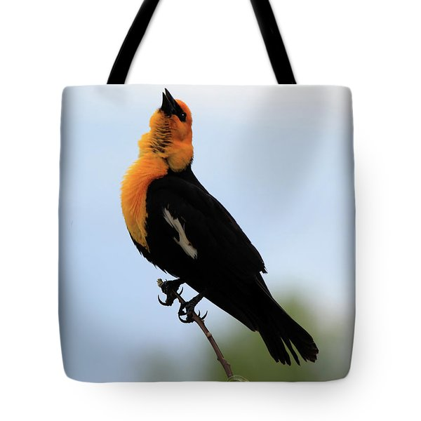 Tote Bag featuring the photograph Standing Tall by Shane Bechler