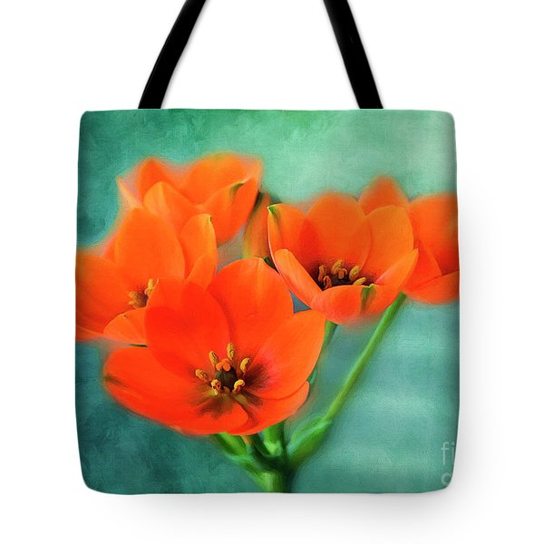 Tote Bag featuring the photograph Star Of Bethlehem by Jutta Maria Pusl