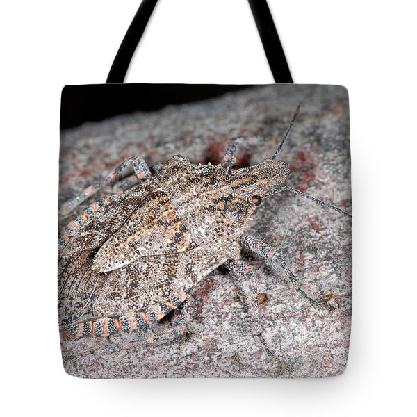 Tote Bag featuring the photograph Stink Bug by Breck Bartholomew