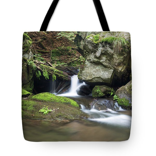 Tote Bag featuring the photograph Stone Guardian Of The Waterfalls - Bizarre Boulder On The Bank by Michal Boubin