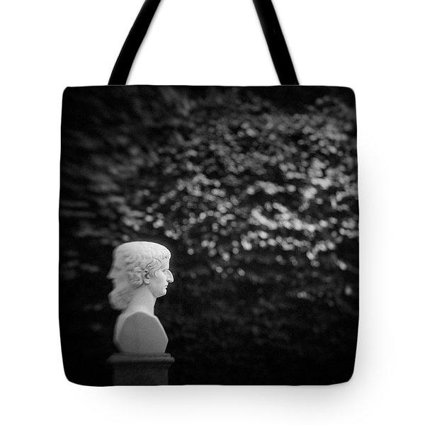 St.petersburg #042 Tote Bag