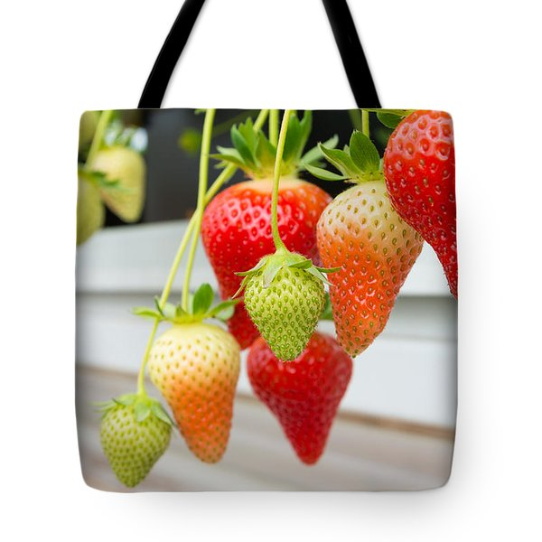 Tote Bag featuring the photograph Strawberry Farm by Hans Engbers