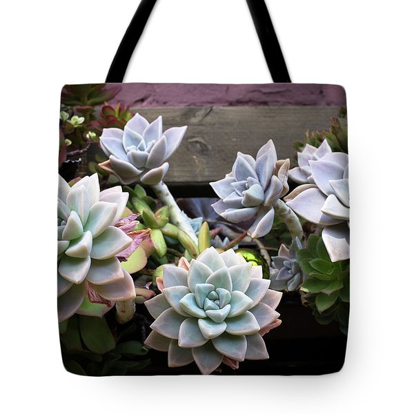 Tote Bag featuring the photograph Succulents by Catherine Lau