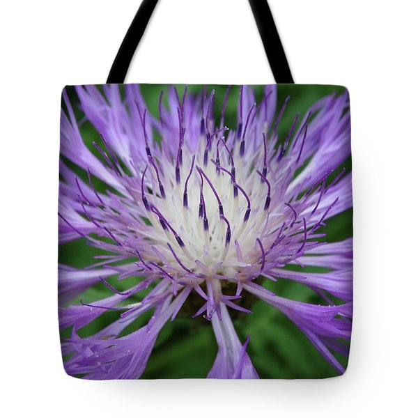 Summer Blooms Tote Bag by Rebecca Overton