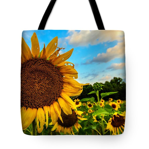 Summer Suns  Tote Bag