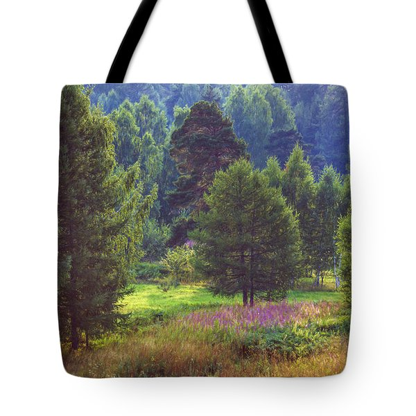 Tote Bag featuring the photograph Summer Time by Vladimir Kholostykh