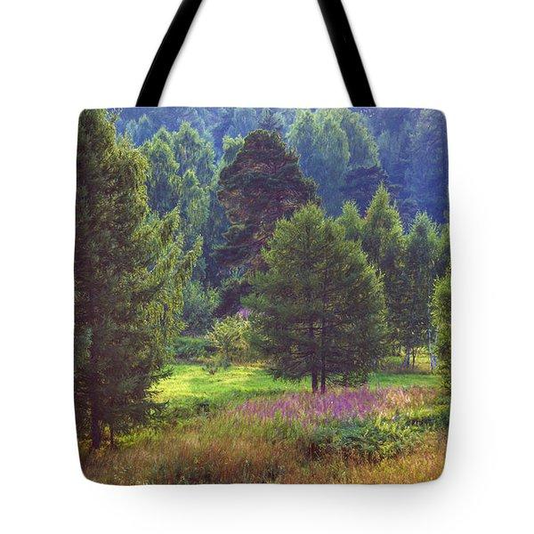 Summer Time Tote Bag by Vladimir Kholostykh