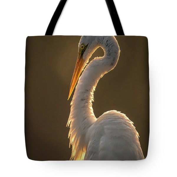 Tote Bag featuring the photograph Sunbathing by Francisco Gomez