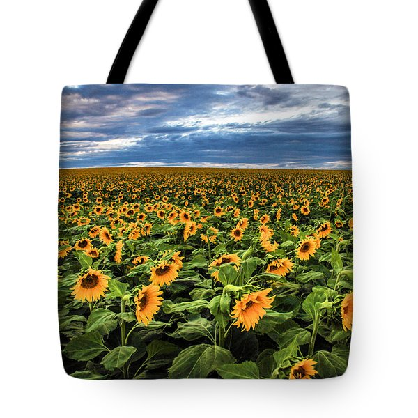Sunflower Farm Tote Bag