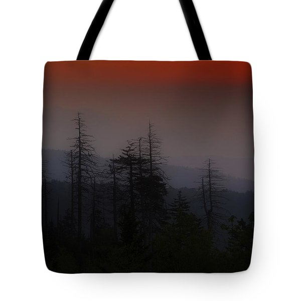 Tote Bag featuring the photograph Sunrise From Clingman's Dome by Andy Crawford