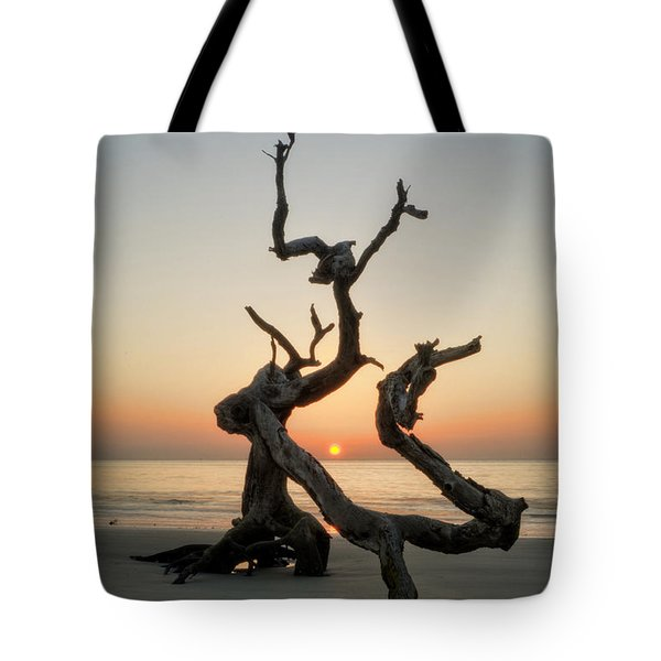 Sunrise On Driftwood Tote Bag