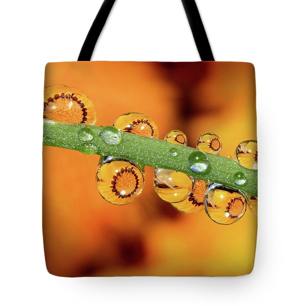 Sunrises Sunsets Tote Bag by Gary Yost