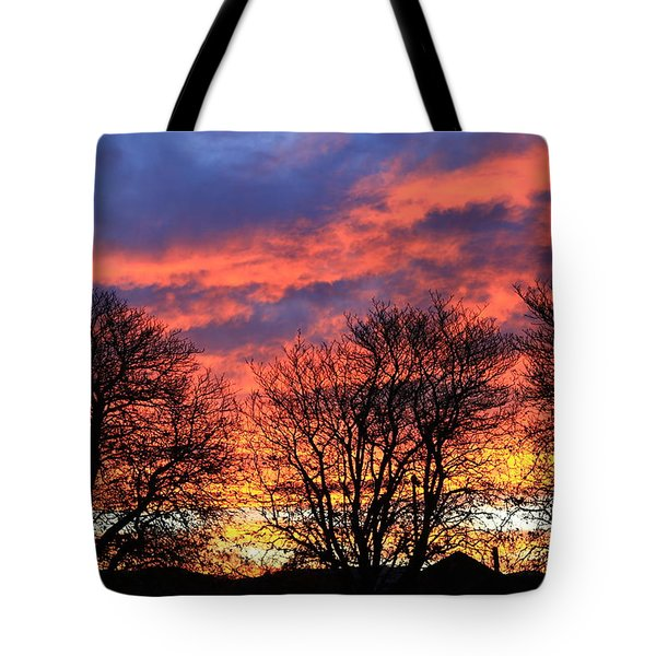 Tote Bag featuring the photograph Sunset And Filigree by Nareeta Martin