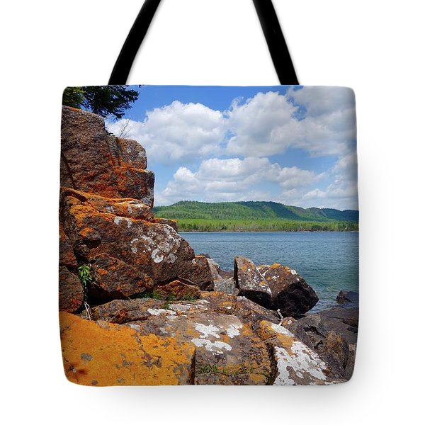 Superior Lichens Tote Bag by Sandra Updyke