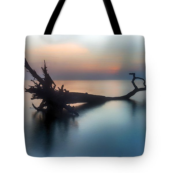 Surrounded Tote Bag by Alan Raasch