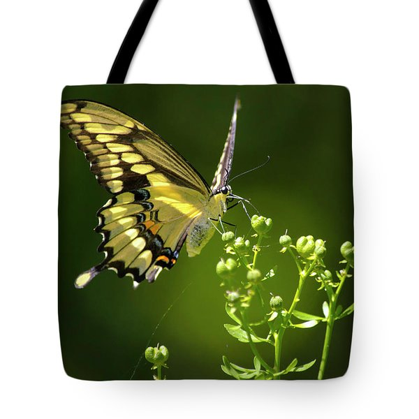 Tote Bag featuring the photograph Elegant Swallowtail Butterfly by Christina Rollo