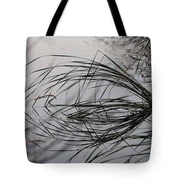 Symetry Tote Bag