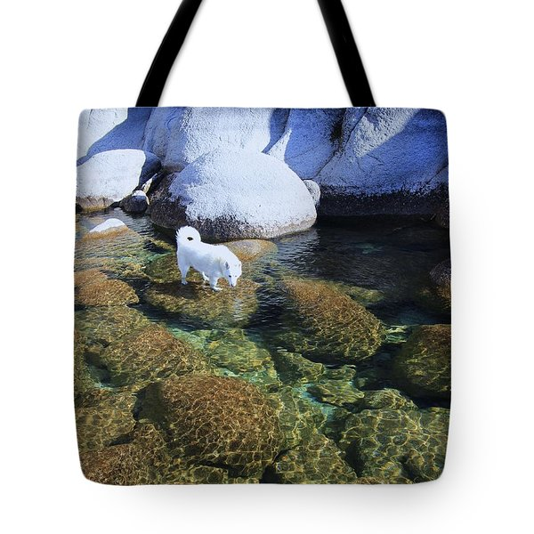 Tote Bag featuring the photograph Tahoe Wild  by Sean Sarsfield
