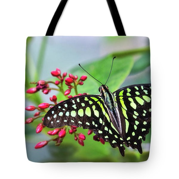 Tote Bag featuring the photograph Tailed Green Jay Butterfly  by Saija Lehtonen