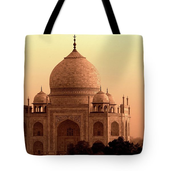 Taj Mahal Tote Bag by Aidan Moran