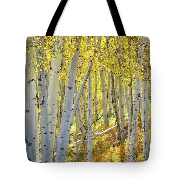 Tote Bag featuring the photograph Telluride Aspens by Ray Mathis