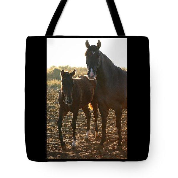 Texas Mare  Tote Bag