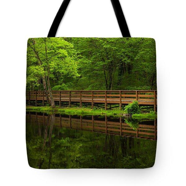 The Bridge Tote Bag by Karol Livote