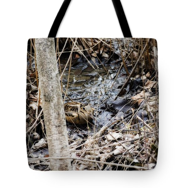 The Elusive American Woodcock Tote Bag