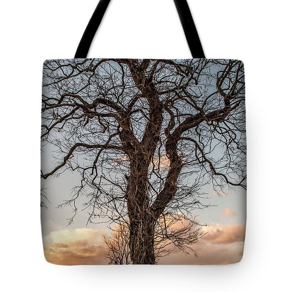 The End Of Another Day Tote Bag