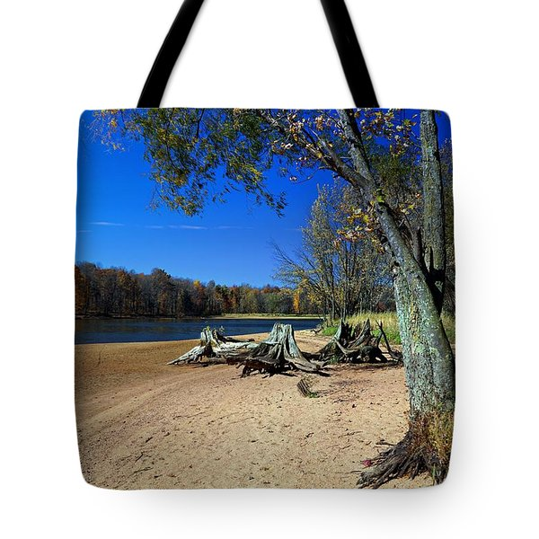 Tote Bag featuring the photograph The End Of Summer by Judy  Johnson