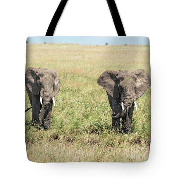The Pair Tote Bag