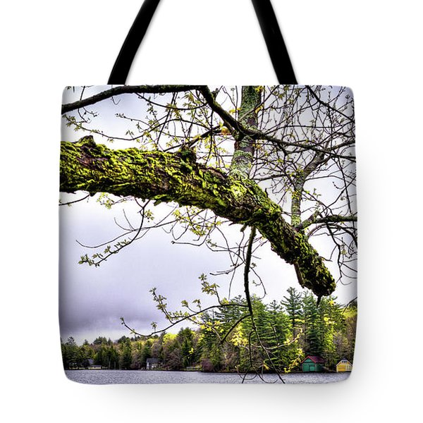 The Pond In Old Forge Tote Bag by David Patterson