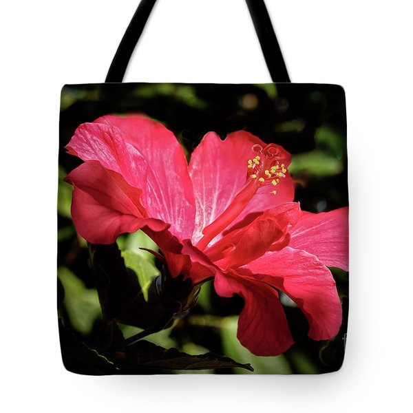 The Red Hibiscus Tote Bag by Robert Bales