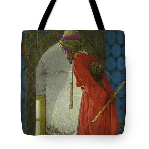 The Tortoise Trainer Tote Bag